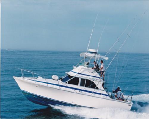 Oceana Boatworks 35 Bertram Restoration Project